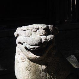 蓬莱神社の狛犬