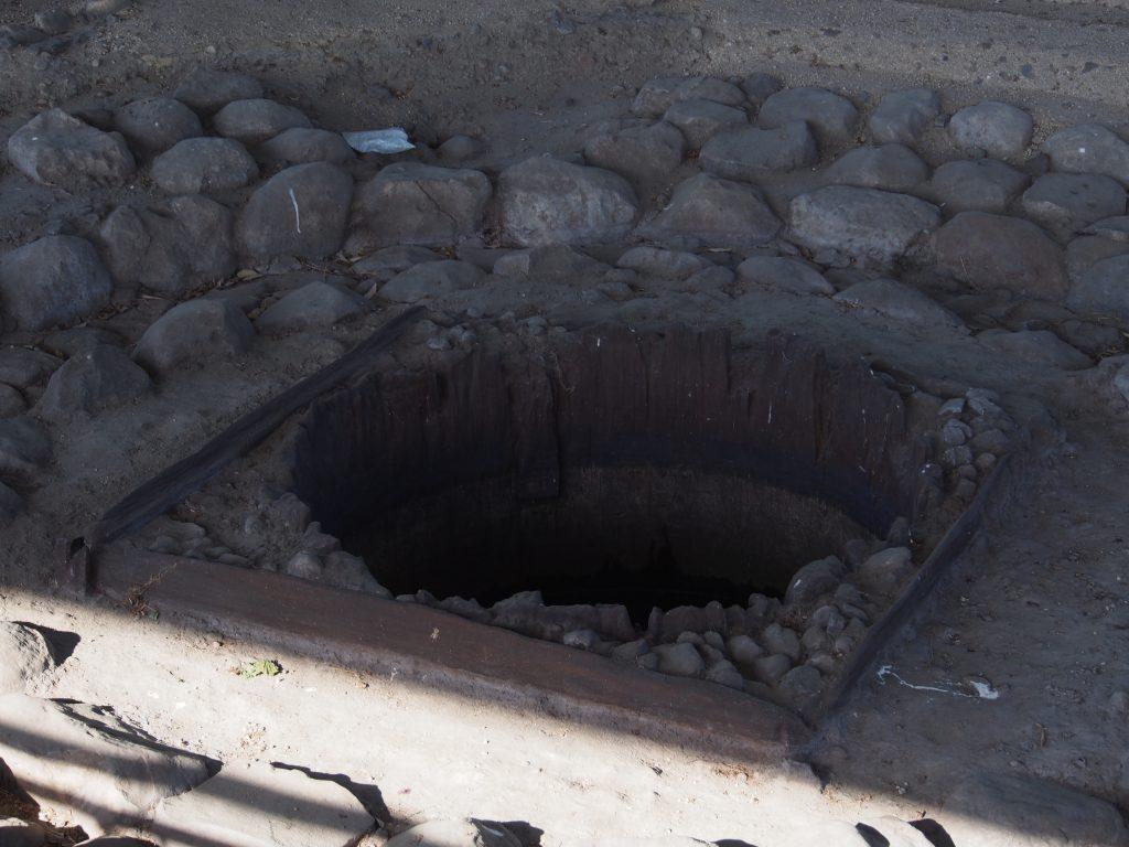 現存する平城宮跡の「造酒司井戸」