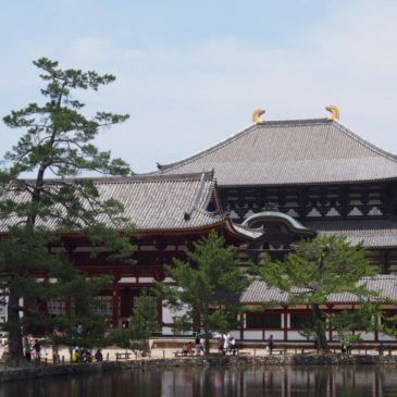 【鏡池(東大寺)】水面に映る「大仏殿」をご覧いただける美しい水辺
