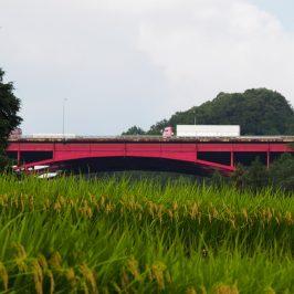 奈良の交通の難所「名阪国道オメガカーブ」