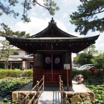 【喜光寺弁天堂】池に浮かぶ小さなお堂にはユニークな秘仏「宇賀神像」が安置される