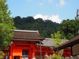 【簡単まとめ】奈良「春日大社」の歴史・創建の由来はどうなってるの?【藤原氏・興福寺】