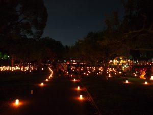 【奈良の夏】「なら燈花会」完全ガイド―各会場・アクセス・楽しみ方など【観光】