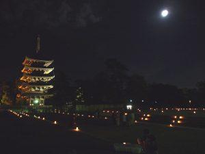 なら燈花会(興福寺)