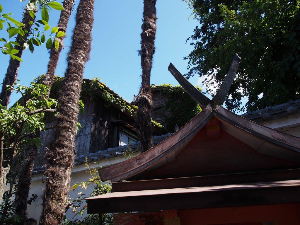 独特の風景が広がる徳融寺の「裏庭」