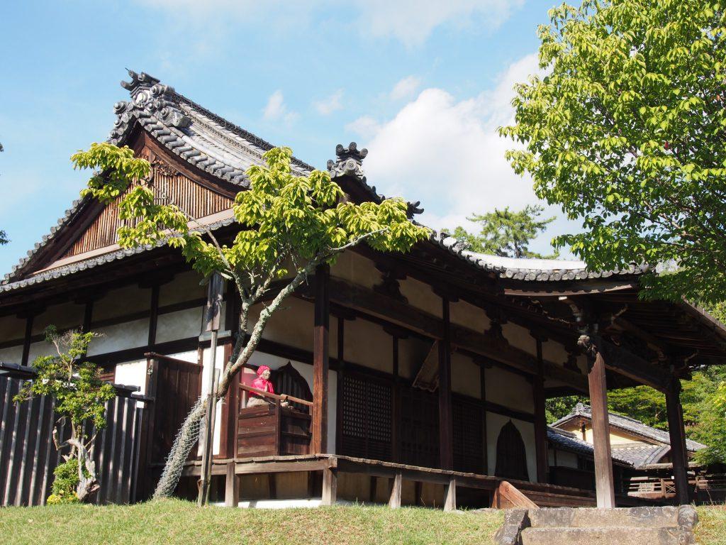 東側から東大寺指図堂を望む