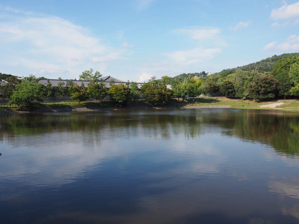 大仏池から正倉院周辺を望む