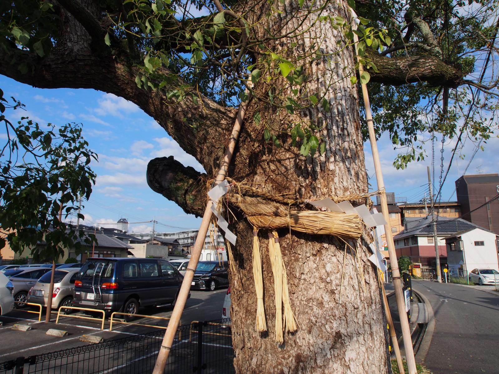 芝辻の野神さん(奈良市)