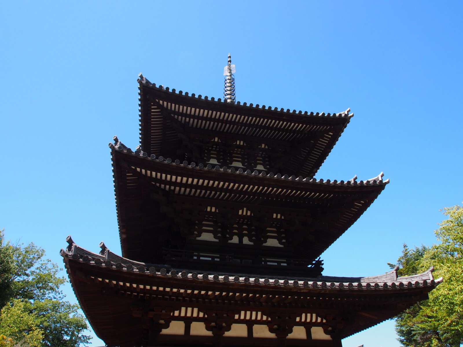 興福寺三重塔を真下から見上げる