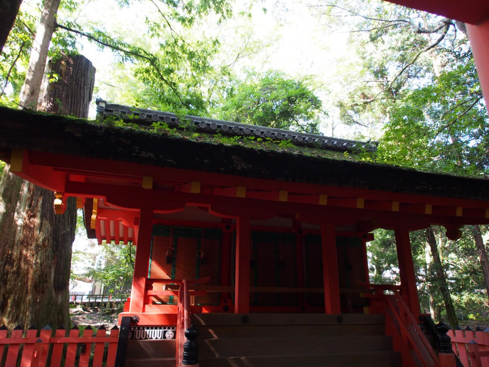 水谷神社(春日大社)の本殿