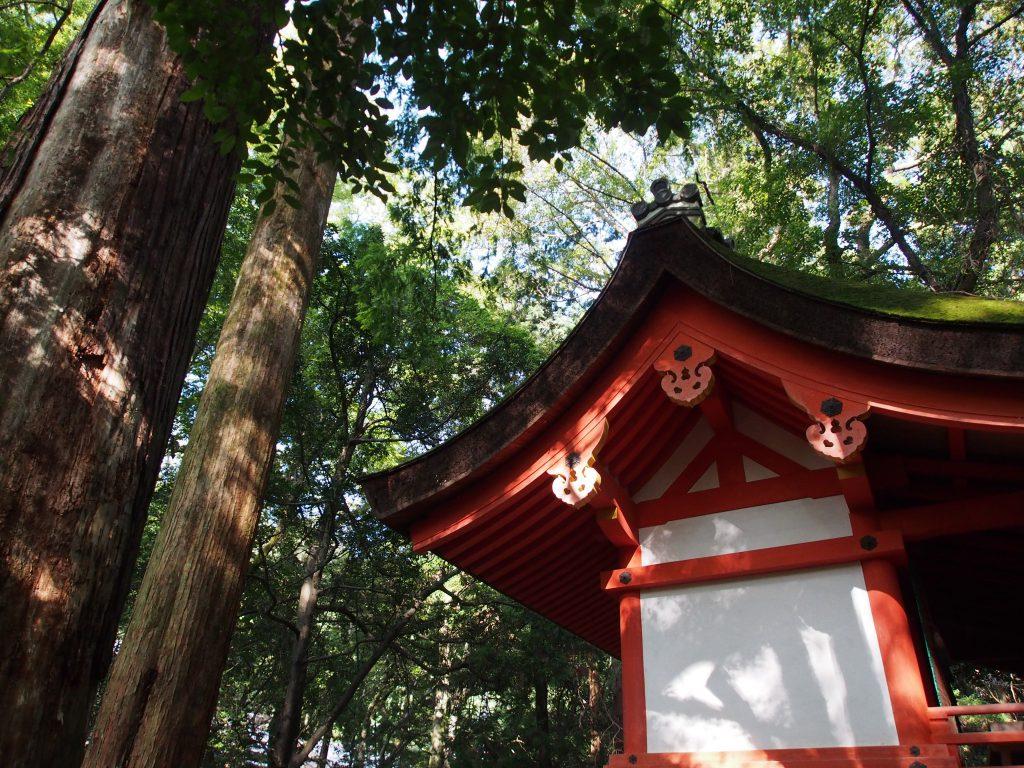 【水谷神社】春日大社境内北端にある立派な摂社は「子宝の神様」として信仰を集める