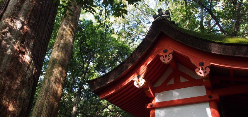【春日大社】境内北端の子宝の神様「水谷神社」ってどんなところ?歴史・ご利益などをじっくりご案内!
