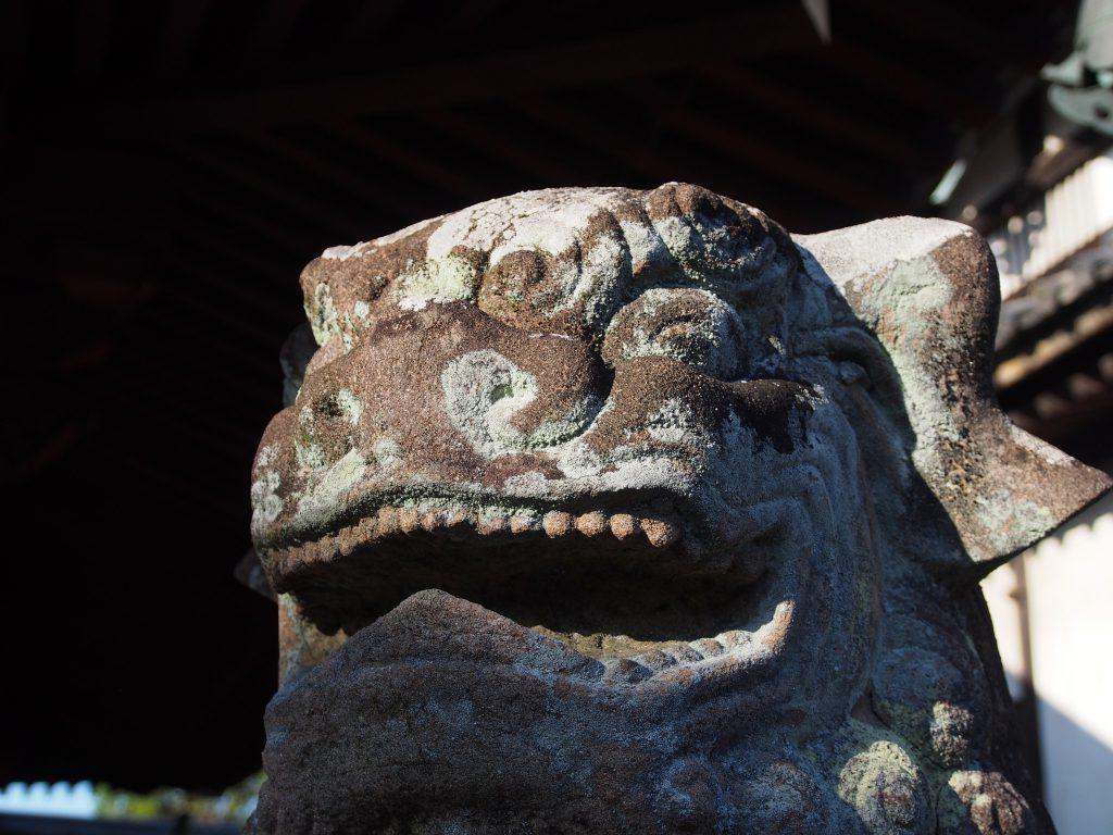 蓮長寺(奈良)の狛犬