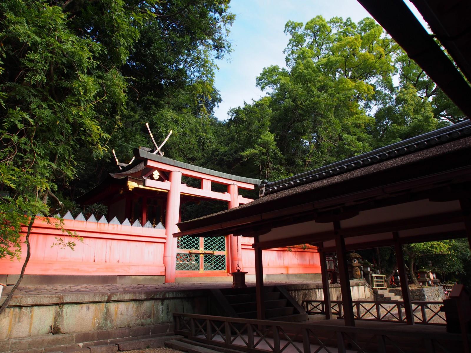 若宮神社(春日大社)の拝舎と本殿