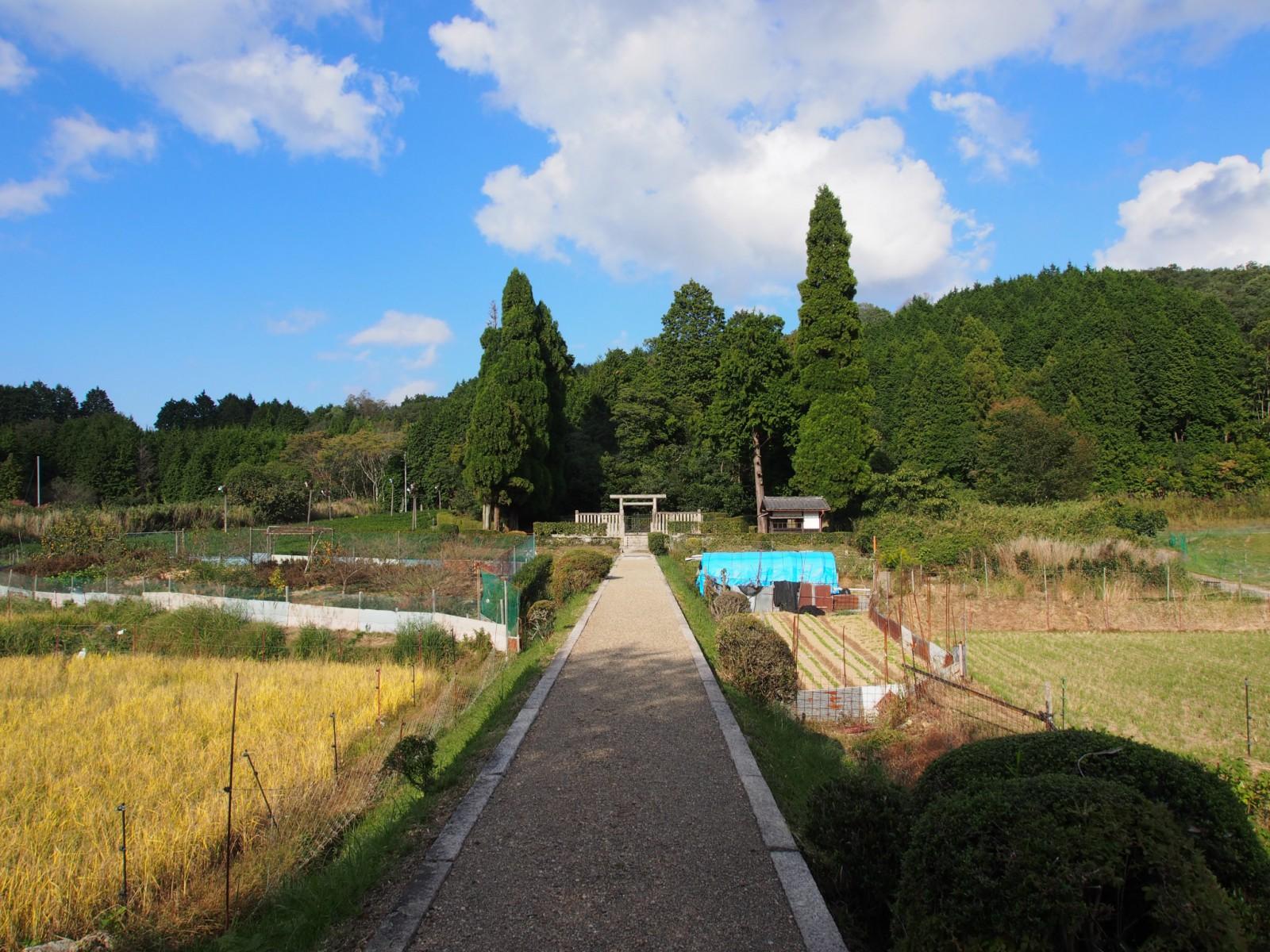 春日宮天皇陵への参道