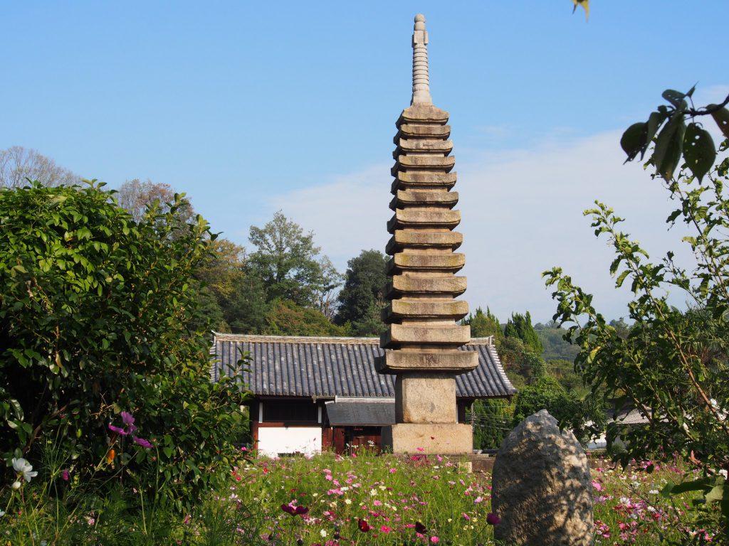 【般若寺十三重石宝塔】日本有数の石塔はコスモスに包まれて一層際立つ