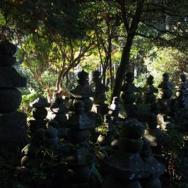 西山来迎寺の五輪塔群