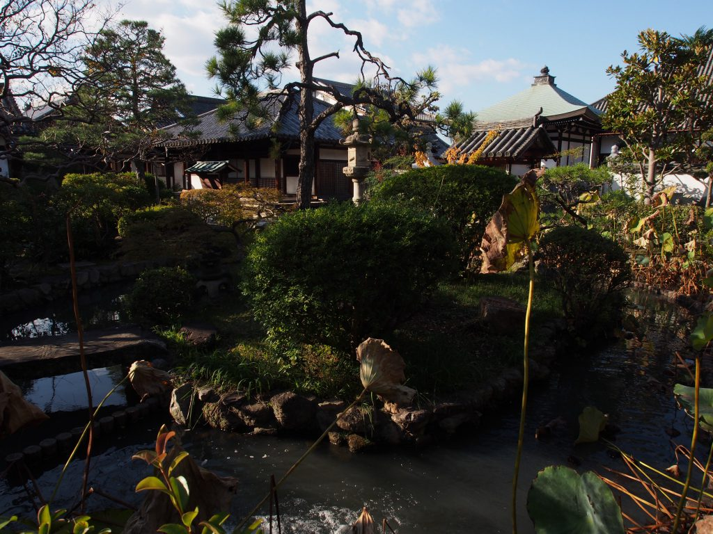 十輪院の庭園