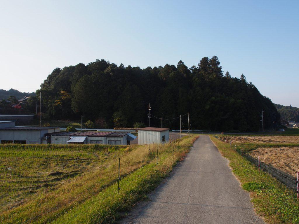 夜支布山口神社の社叢