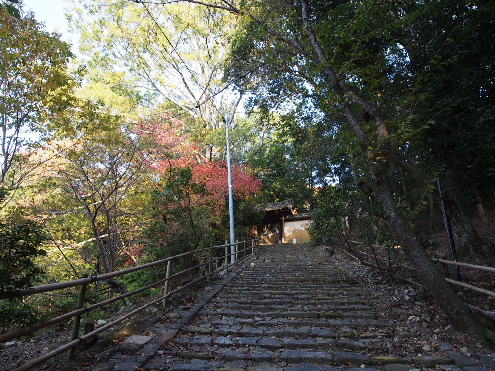 東大寺知足院に登る石段