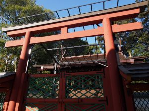 【氷室神社本殿】「床下空間」も持つ重厚な檜皮葺の社殿建築