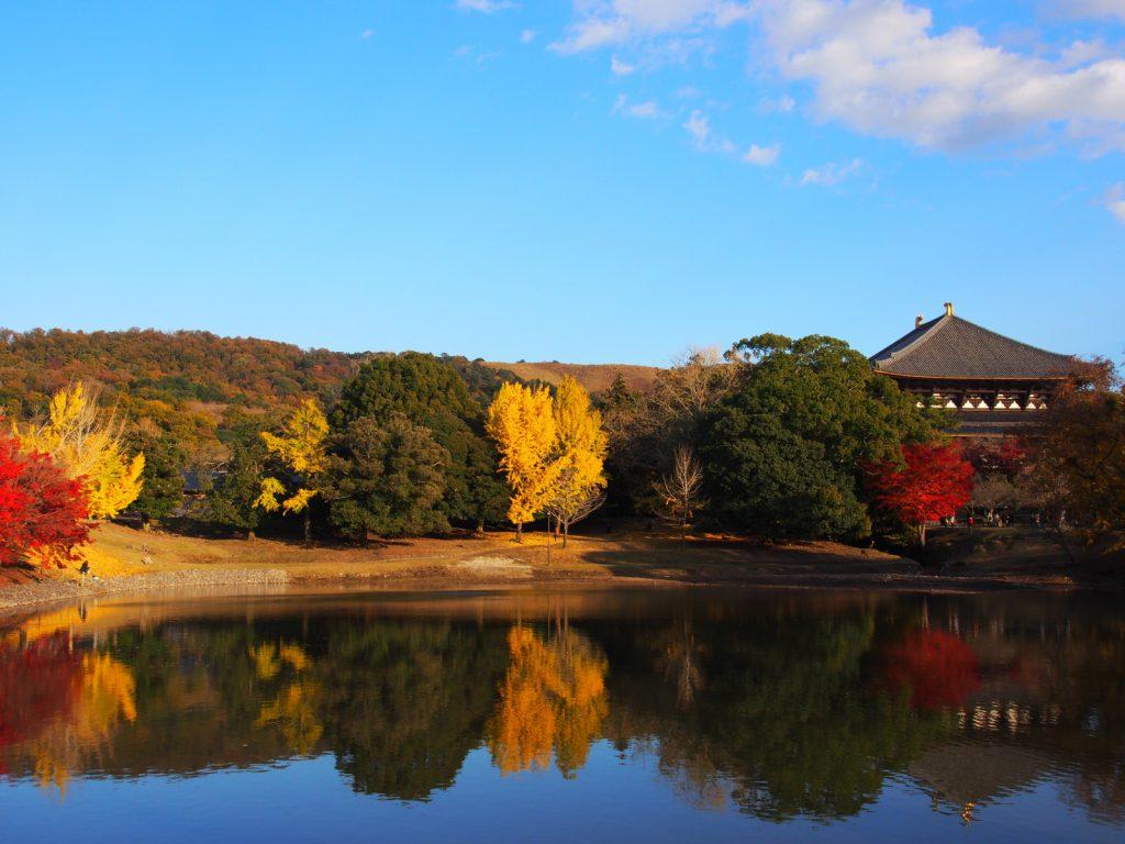 晩秋の大仏池