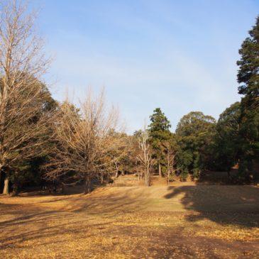 【東大寺東塔院跡】イチョウが美しい空間にはかつて巨大な「七重塔」があった