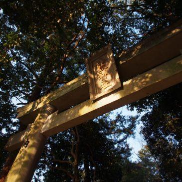 【八坂神社(鹿野園町)】境内には「6つの社殿」が堂々と並ぶ