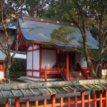 【若宮神社(手向山八幡宮)】神社の中心に見えるような立派な佇まいの境内社