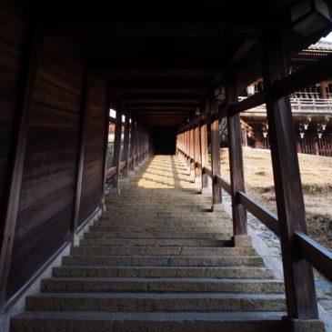 【二月堂登廊】「修二会」でお松明を持った童子に先導された「練行衆」らが登る石段
