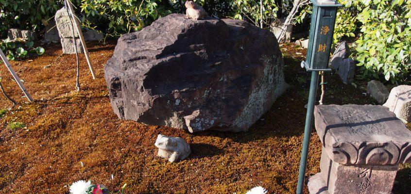 【かえる石(元興寺)】かつては秀吉の「お気に入りの石」として大阪城に置かれた奇石
