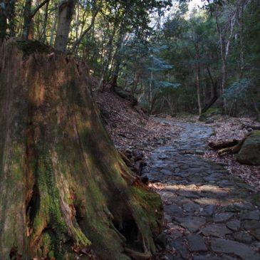 【滝坂の道】柳生の里へと進む石畳の道沿いには貴重な石仏が多数見られる