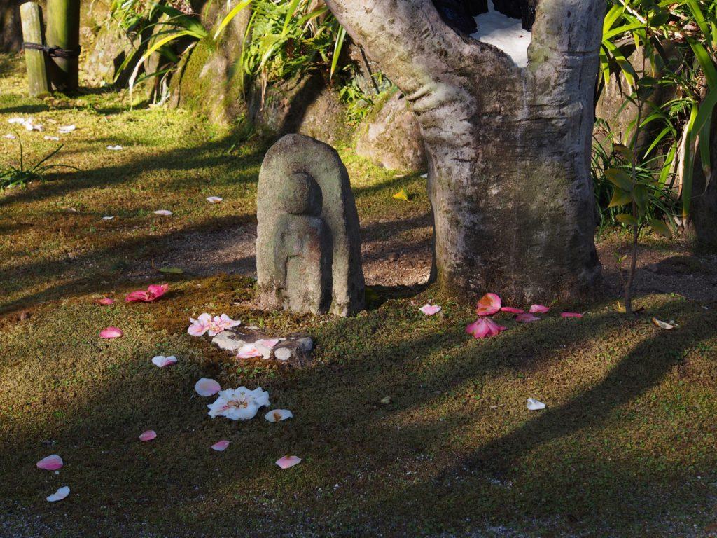 白毫寺の五色椿(散り椿)と石仏
