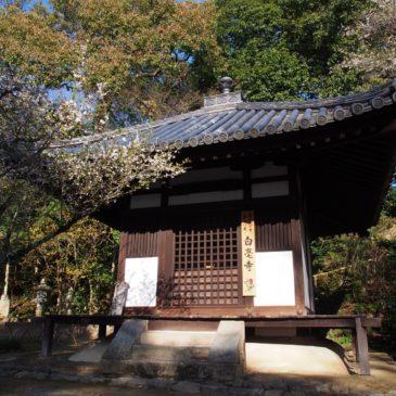 【白毫寺御影堂】江戸時代の白毫寺復興に尽力した「空慶上人」の坐像をお祀りする