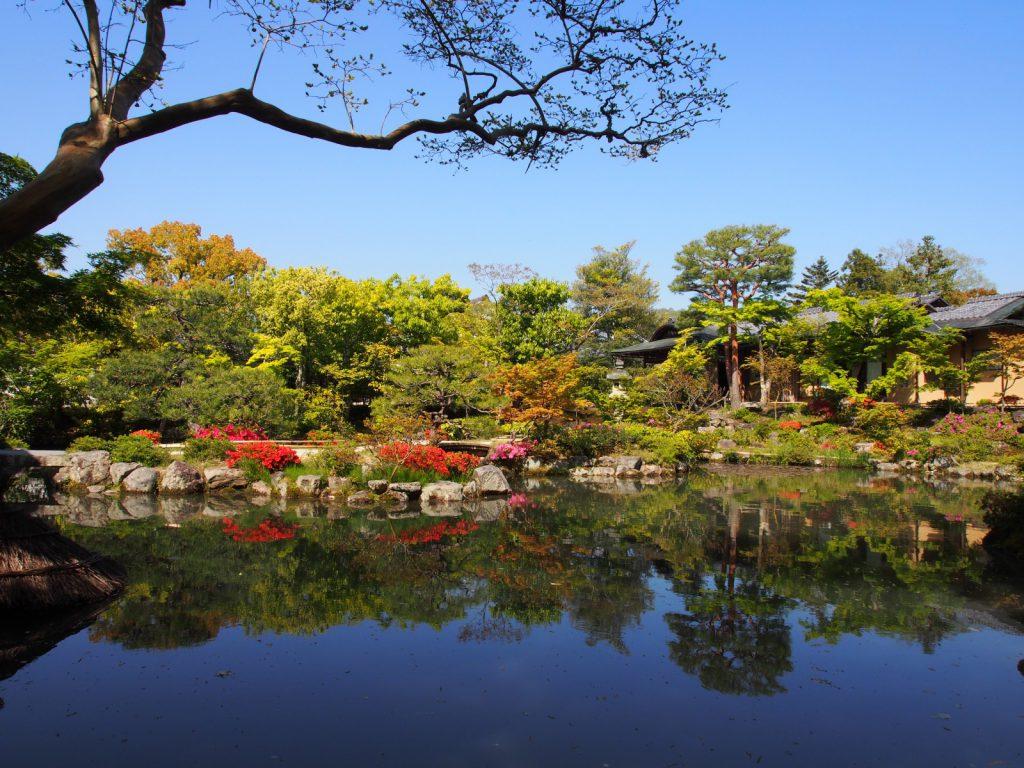 依水園前園に広がる池