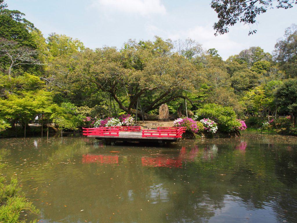 萬葉植物園の池と「浮舞台」