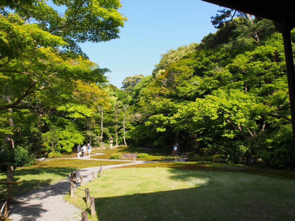 吉城園「苔の庭」