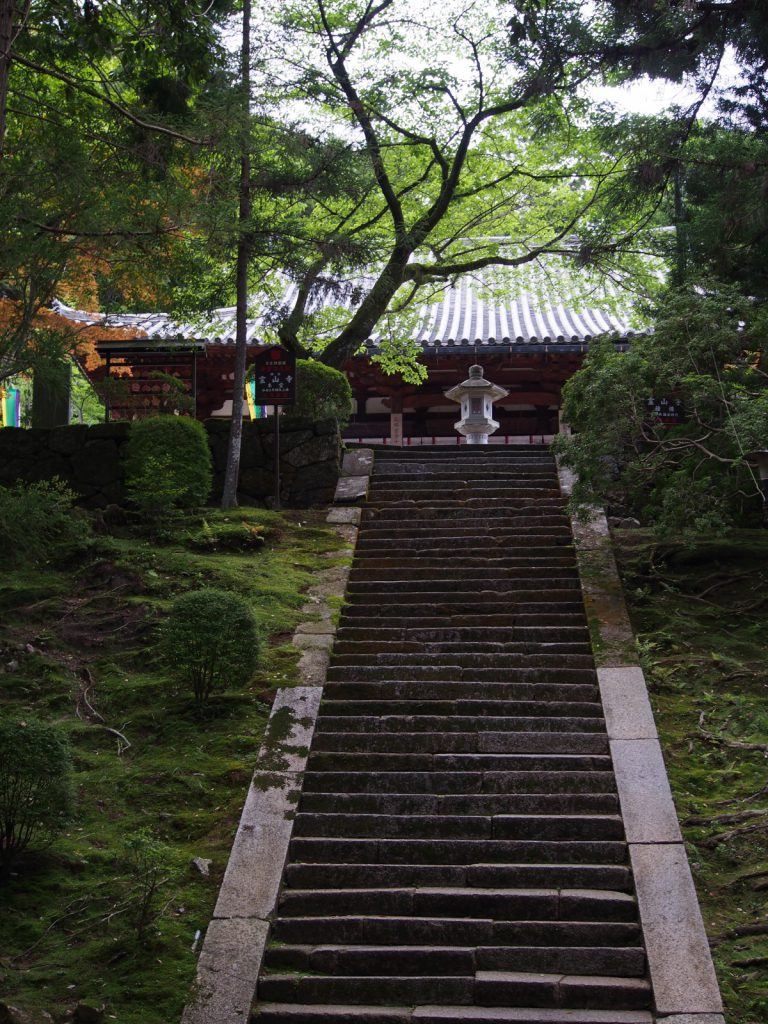 霊山寺本堂へとのぼる石段