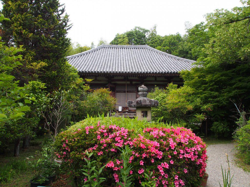 【不退寺】在原業平が創建したと伝わるお寺は佐保路の隠れた「花の名所」