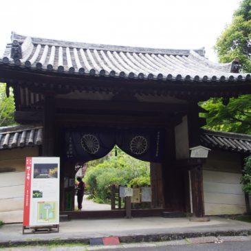 【不退寺南大門】鎌倉時代に建立された重厚な山門はかつての繁栄を物語る存在