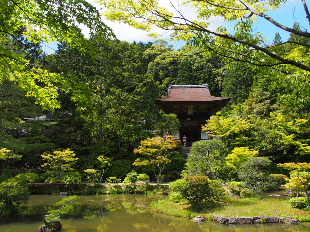 【円成寺】目を見張る美しさの庭園と華麗な仏像で知られる奈良の「隠れ寺」
