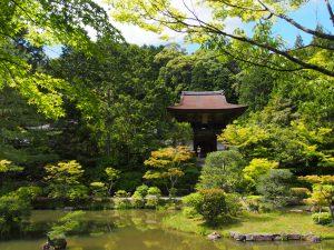 【円成寺名勝庭園】静かな山寺に広がる美しい「浄土式庭園」