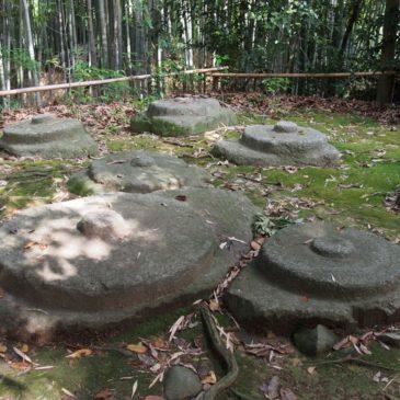 【秋篠寺東塔跡】うっそうとした林の中には複数の礎石が現在も残される