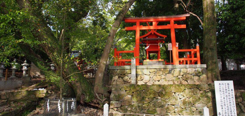 【春日大社の摂末社一覧】61社にも及ぶ摂末社は境内に留まらず奈良市内にも点在する