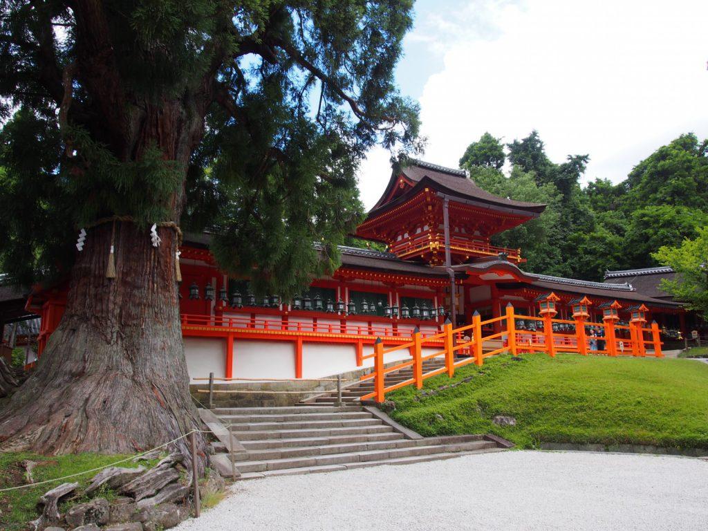 【春日大社】原始林を含む広大な境内地を有する「世界遺産」は「藤原氏」ゆかりの神社