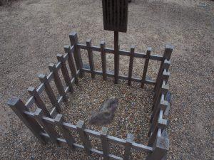 【南門前の神石(春日大社)】南門の正面にある神石には複数の伝説が残される
