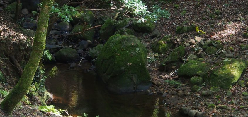 【月日磐】春日山遊歩道沿いにある謎めいた石は「氷室神社」のルーツにも深く関わる