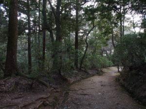 【春日大社禰宜道・奥の院道】「ささやきの小径」が有名な高畑方面と春日大社境内を結ぶ静かな散策ルート