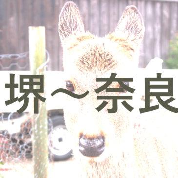 堺市から奈良までの交通アクセスを解説(南海・近鉄・JR)