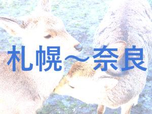札幌から奈良までの交通手段をじっくり解説(飛行機・フェリー・新幹線)